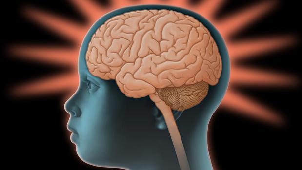 ¿Cómo Cuidar La Salud Cerebral De Los Más Pequeños